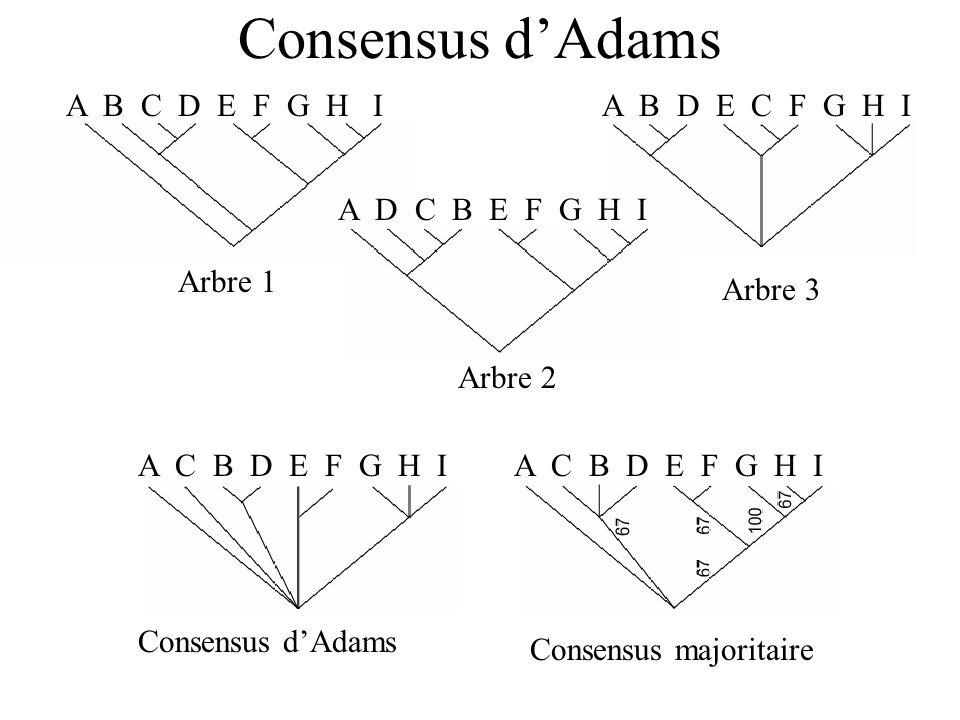 Consensus dAdams A B C D E F G H I Arbre 1 Arbre 3 A B D E C F G H I Arbre 2 A D C B E F G H I Consensus dAdams A C B D E F G H I Consensus majoritaire A C B D E F G H I