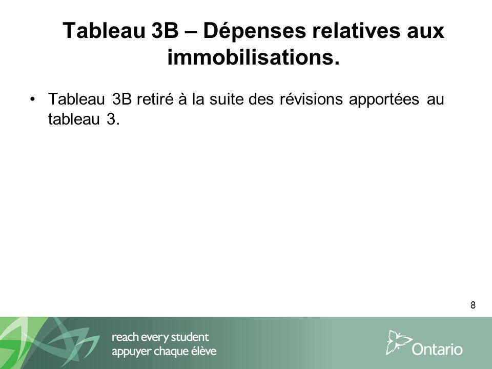 8 Tableau 3B – Dépenses relatives aux immobilisations.