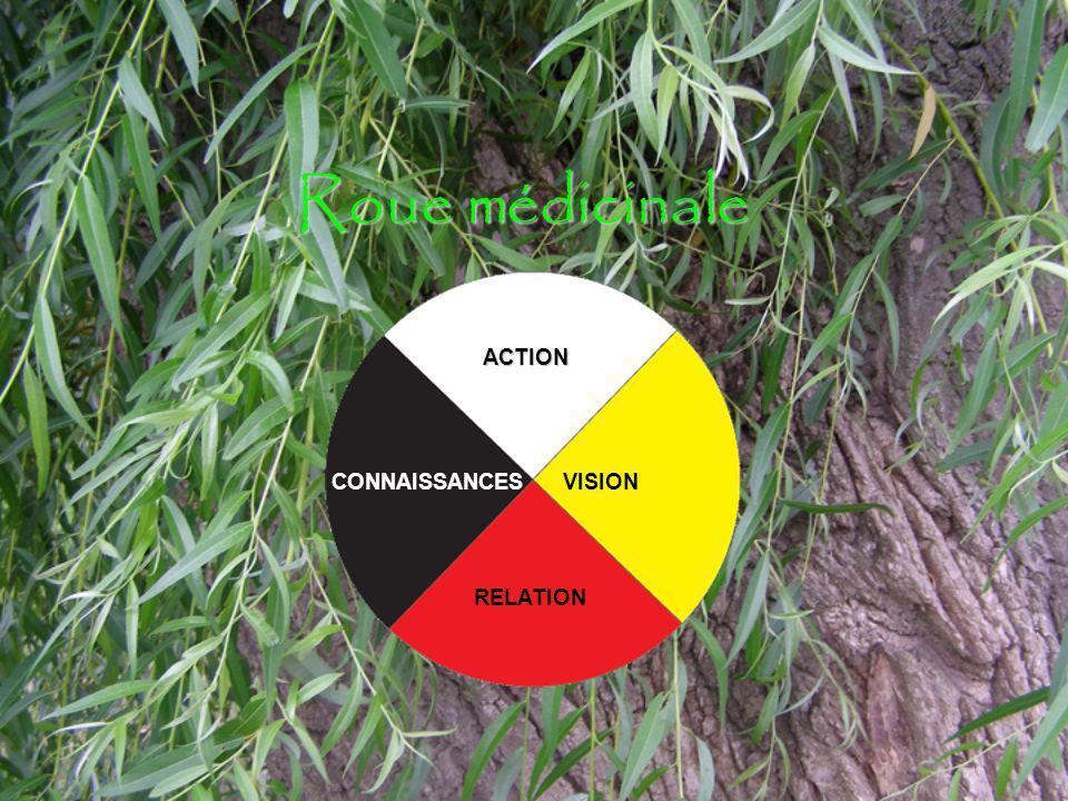 Roue médicinale ACTION VISION RELATION CONNAISSANCES