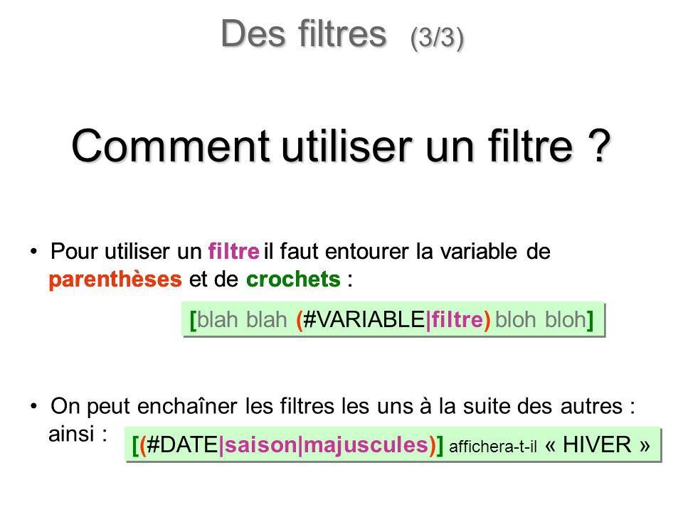On peut enchaîner les filtres les uns à la suite des autres : ainsi : Pour utiliser un filtre il faut entourer la variable de parenthèses et de croche