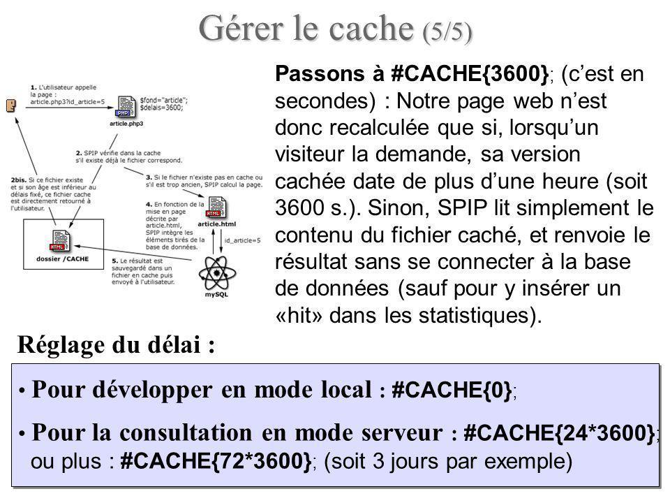 Passons à #CACHE{3600} ; (cest en secondes) : Notre page web nest donc recalculée que si, lorsquun visiteur la demande, sa version cachée date de plus dune heure (soit 3600 s.).