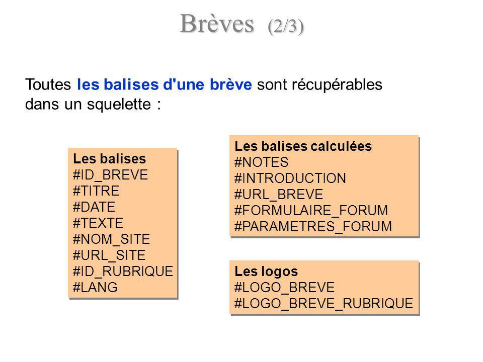 Les balises calculées #NOTES #INTRODUCTION #URL_BREVE #FORMULAIRE_FORUM #PARAMETRES_FORUM Les balises calculées #NOTES #INTRODUCTION #URL_BREVE #FORMU