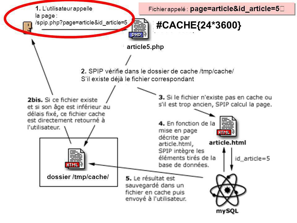 #CACHE{24*3600} Fichier appelé : page=article&id_article=5 1. Lutilisateur appelle la page : /spip.php?page=article&id_article=5 2. SPIP vérifie dans