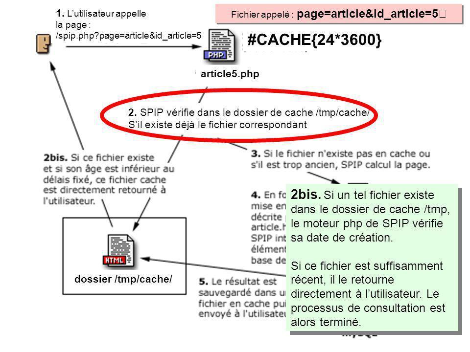 2bis. Si un tel fichier existe dans le dossier de cache /tmp, le moteur php de SPIP vérifie sa date de création. Si ce fichier est suffisamment récent