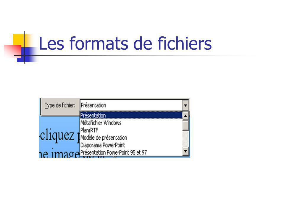 Les formats de fichiers