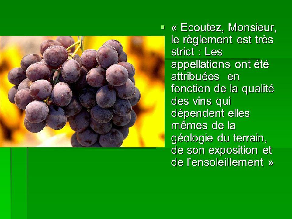 « Ecoutez, Monsieur, le règlement est très strict : Les appellations ont été attribuées en fonction de la qualité des vins qui dépendent elles mêmes de la géologie du terrain, de son exposition et de lensoleillement » « Ecoutez, Monsieur, le règlement est très strict : Les appellations ont été attribuées en fonction de la qualité des vins qui dépendent elles mêmes de la géologie du terrain, de son exposition et de lensoleillement »