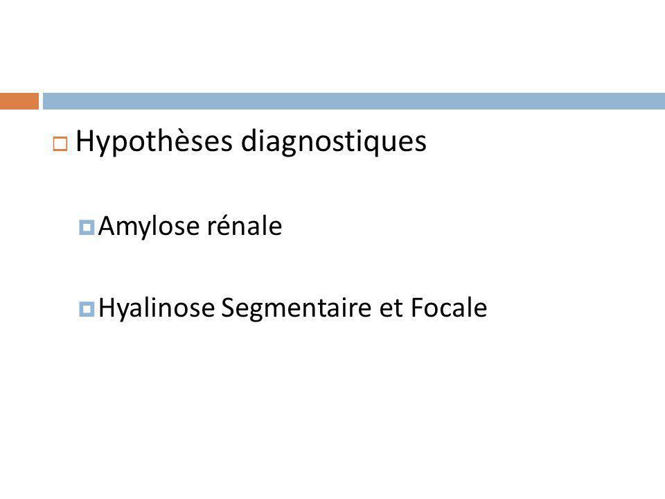 Hypothèses diagnostiques Amylose rénale Hyalinose Segmentaire et Focale