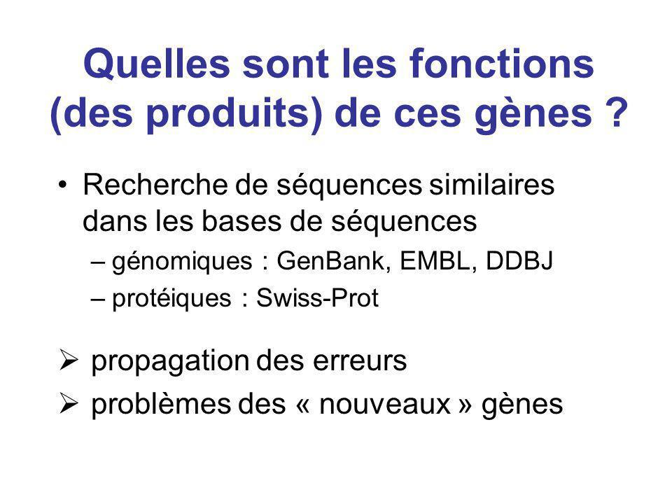 Quelles sont les fonctions (des produits) de ces gènes ? Recherche de séquences similaires dans les bases de séquences –génomiques : GenBank, EMBL, DD