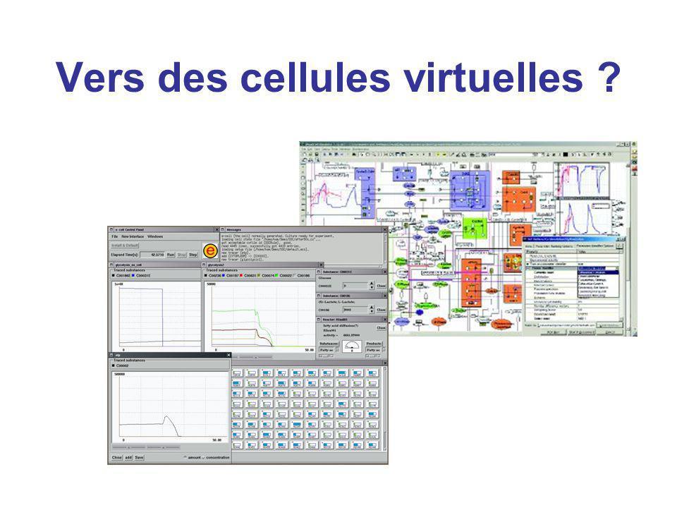 Vers des cellules virtuelles ?
