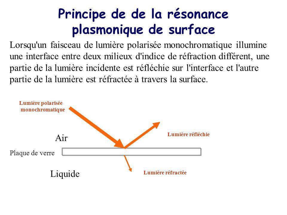 Principe de de la résonance plasmonique de surface Lorsqu un faisceau de lumière polarisée monochromatique illumine une interface entre deux milieux d indice de réfraction différent, une partie de la lumière incidente est réfléchie sur l interface et l autre partie de la lumière est réfractée à travers la surface.