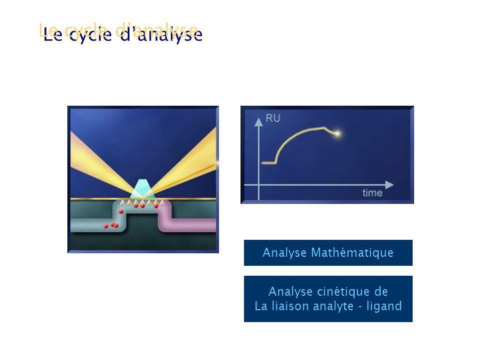 Analyse Mathématique Le cycle danalyse Analyse cinétique de La liaison analyte - ligand