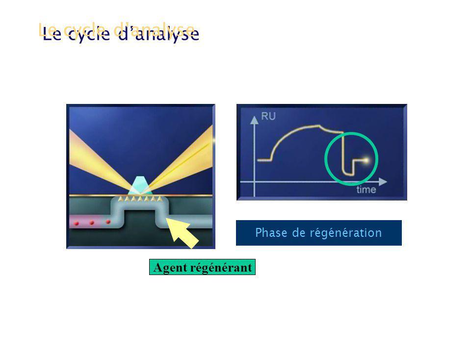 Le cycle danalyse Phase de régénération Agent régénérant