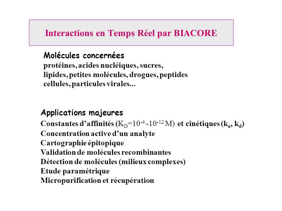 Interactions en Temps Réel par BIACORE Applications majeures Constantes daffinités (K D =10 -4 -10 -12 M) et cinétiques (k a, k d ) Concentration active dun analyte Cartographie épitopique Validation de molécules recombinantes Détection de molécules (milieux complexes) Etude paramétrique Micropurification et récupération Molécules concernées protéines, acides nucléiques, sucres, lipides, petites molécules, drogues, peptides cellules, particules virales...
