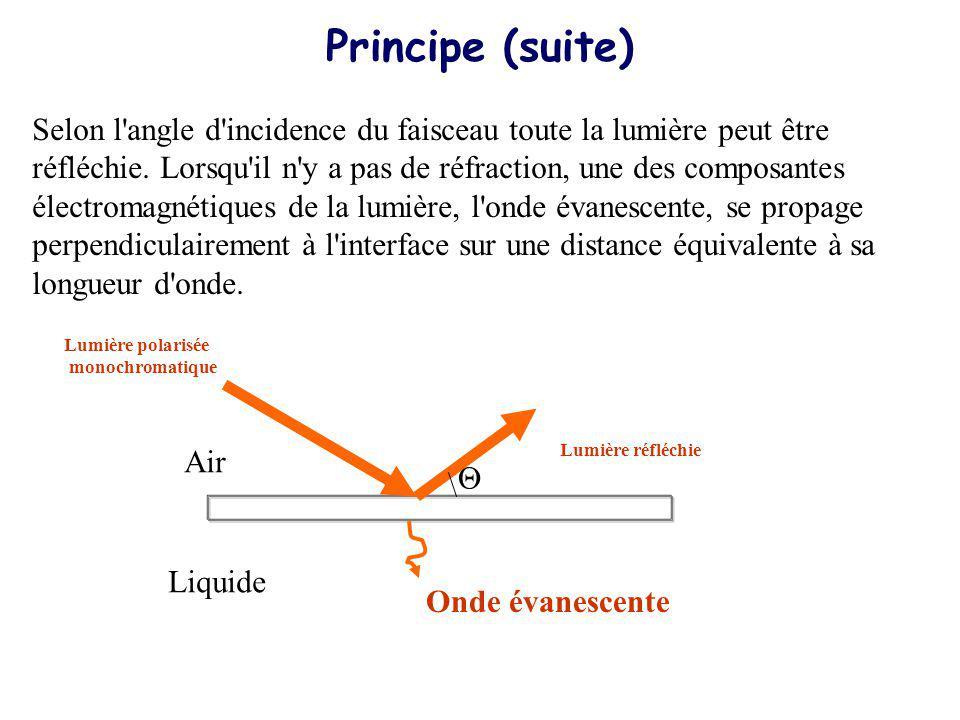 Si une couche fine de métal, riche en électrons libres est déposée à l interface, ceux-ci entrent en résonance avec les photons du faisceau incident, ce phénomène est appelé résonance plasmonique de surface.