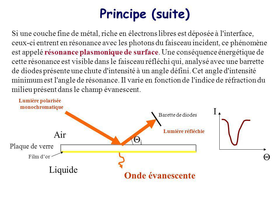 Si une couche fine de métal, riche en électrons libres est déposée à l'interface, ceux-ci entrent en résonance avec les photons du faisceau incident,