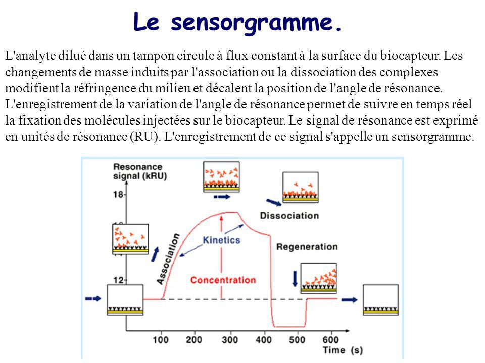 Le cycle danalyse en temps réel Ligand