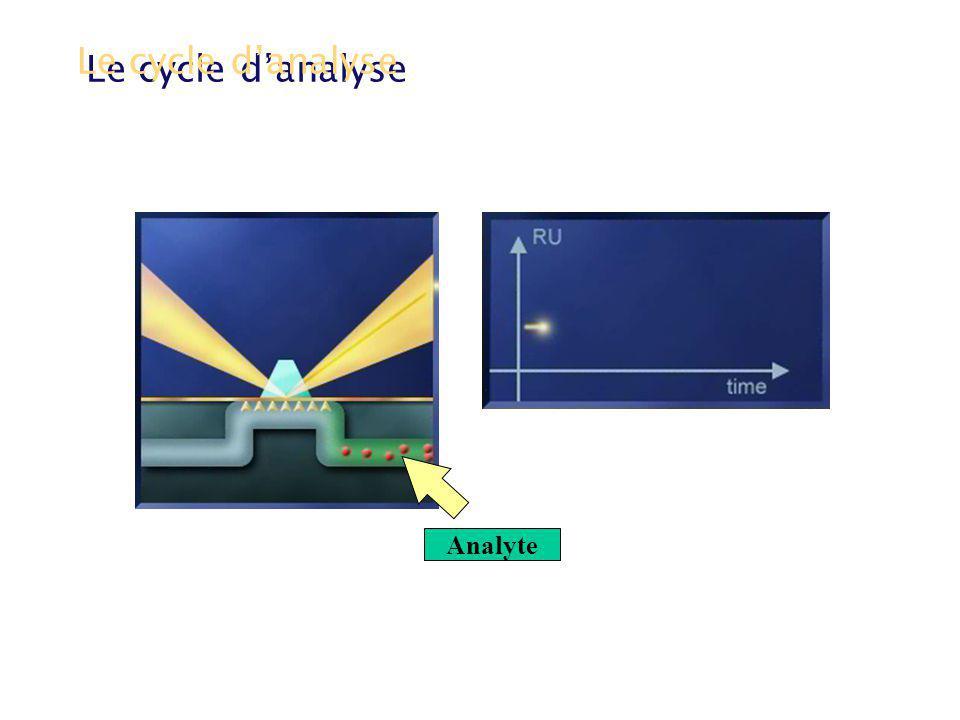 Le cycle danalyse Phase dassociation