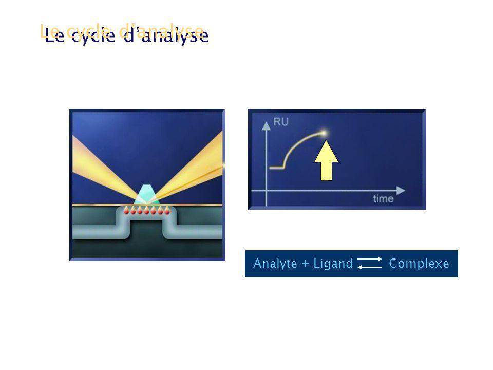 Phase de dissociation Le cycle danalyse Tampon