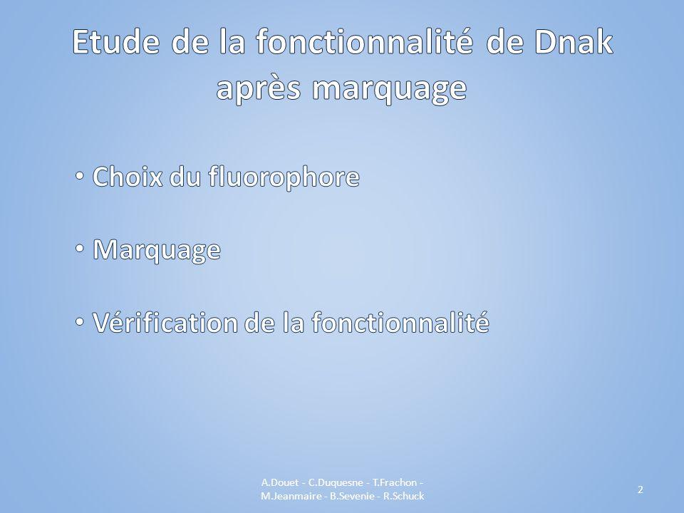 A.Douet - C.Duquesne - T.Frachon - M.Jeanmaire - B.Sevenie - R.Schuck 2