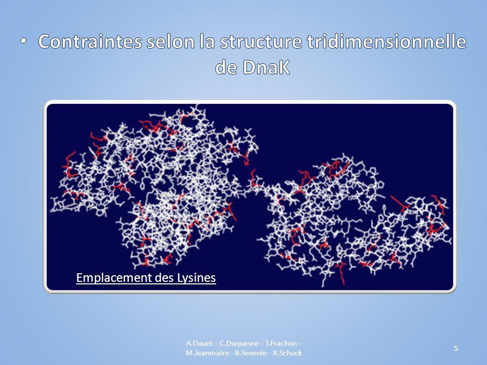A.Douet - C.Duquesne - T.Frachon - M.Jeanmaire - B.Sevenie - R.Schuck 5 Emplacement des Lysines