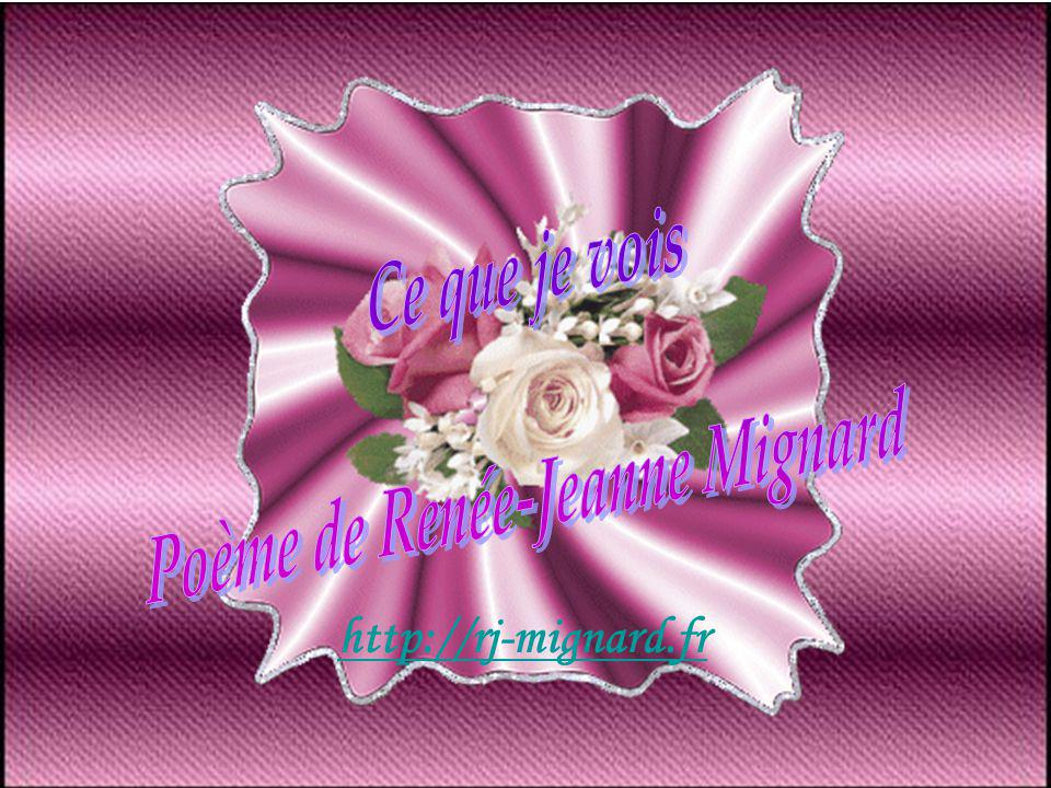 http://rj-mignard.fr