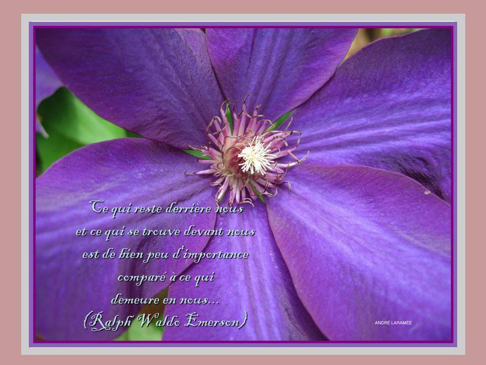 Ce qui reste derrière nous et ce qui se trouve devant nous est de bien peu d importance comparé à ce qui demeure en nous...