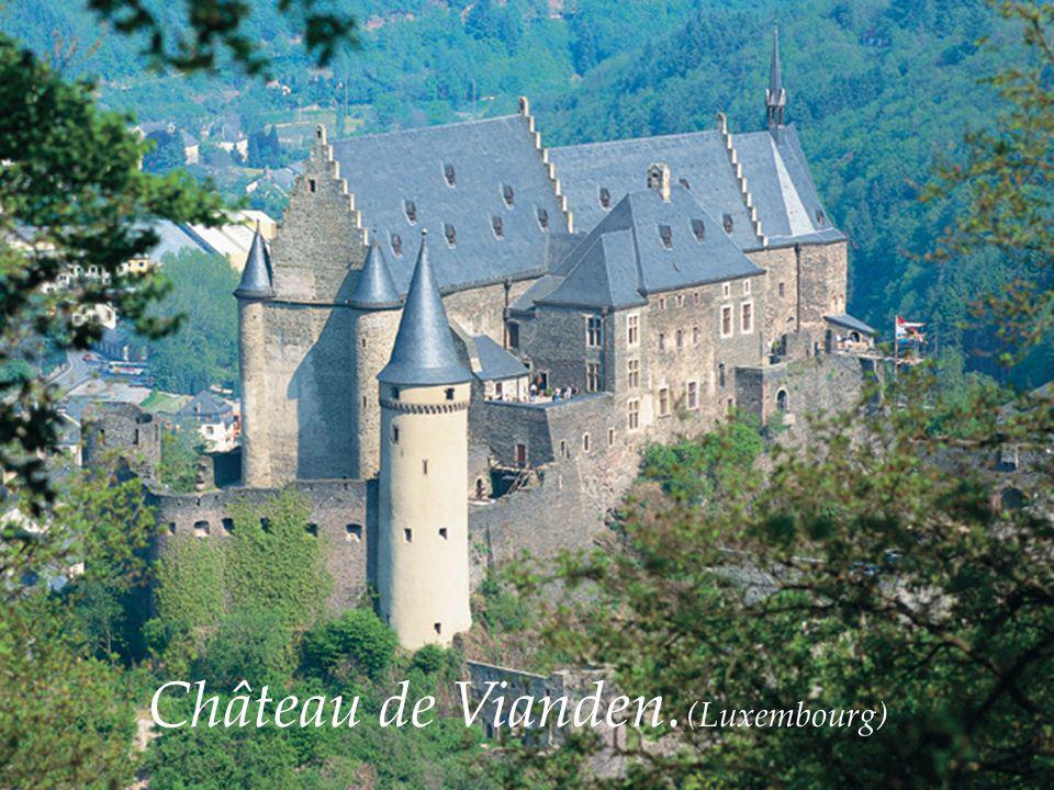 Château de Vianden. (Luxembourg)
