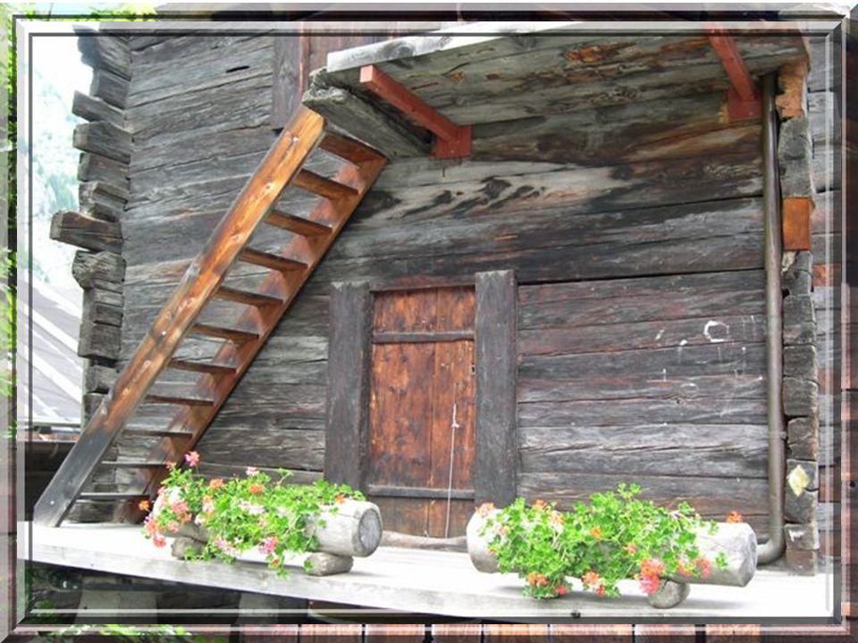 Rehaussez votre passion pour la bonne cuisine et faite une escale à lHôtel Bergfreund.