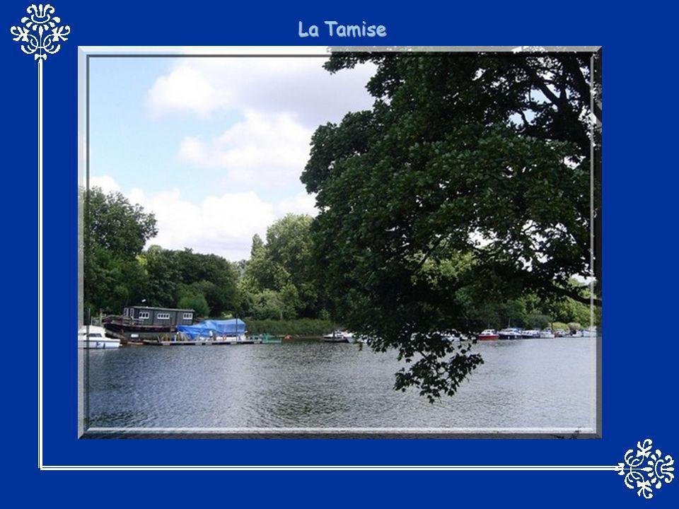 Vue panoramique de La Seine avec Notre-Dame de Paris à droite. Lun des fameux bateaux-mouches qui avance sur les eaux placides de la Seine.