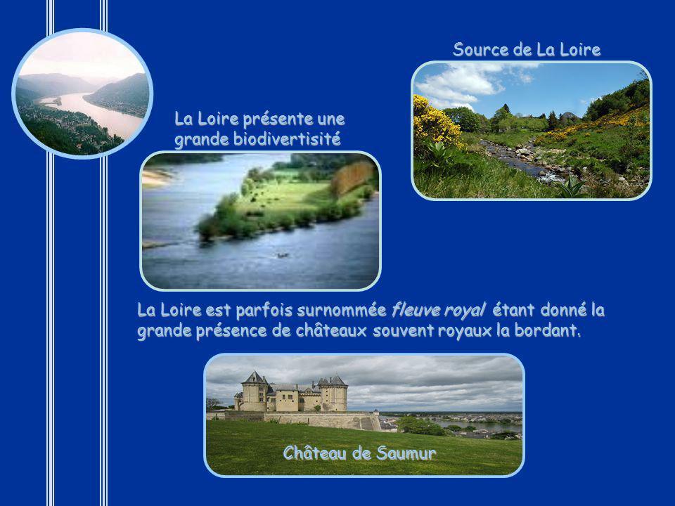 La Loire est un fleuve de 1 020 km de longueur, ce qui en fait le fleuve le plus long de France. Son bassin de 117 000 km² occupe plus dun cinquième d