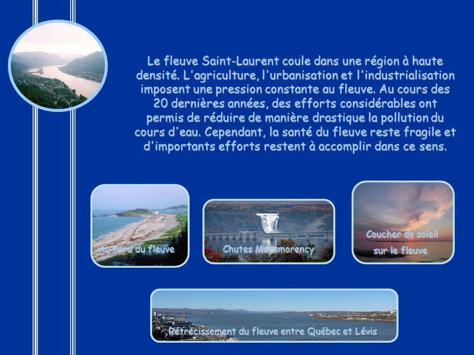 Je ne saurais terminer ce tour du monde sans mentionner le joyau de mon pays : le majestueux fleuve Saint-Laurent. Ce fleuve que les Amérindiens appel