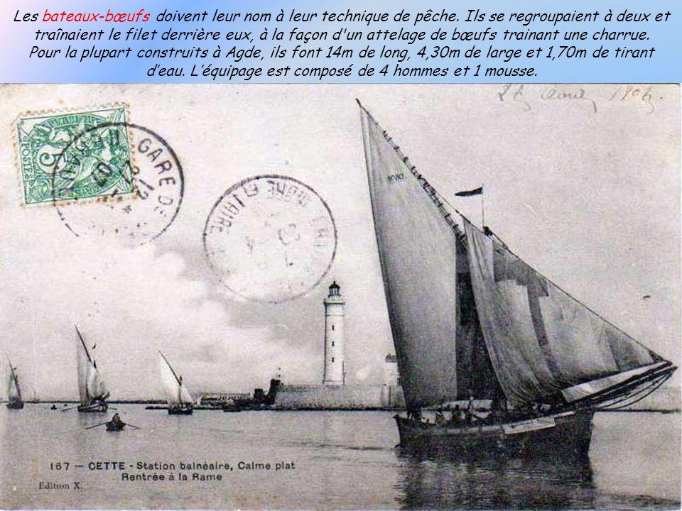 Le Maire de la ville, Monsieur Emile Doumet en 1861 vendit à la ville, pour une somme plutôt symbolique une grande partie de son terrain; exactement 1