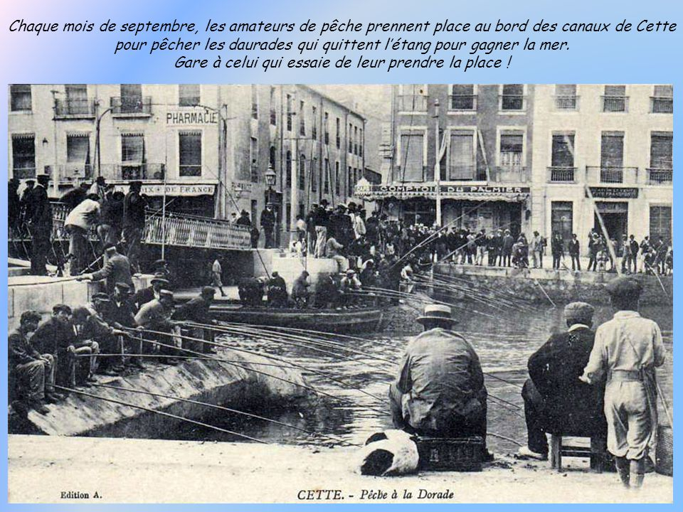 Les bateaux-bœufs doivent leur nom à leur technique de pêche. Ils se regroupaient à deux et traînaient le filet derrière eux, à la façon d'un attelage