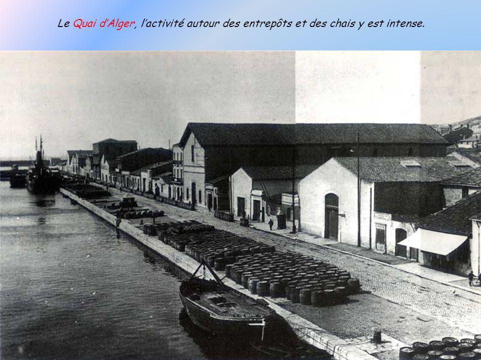 Station Zoologique de Sète construite en 1896 à la Plagette. Elle changea de nom en 1928 pour devenir Station Biologique de Sète, et fait partie de lU