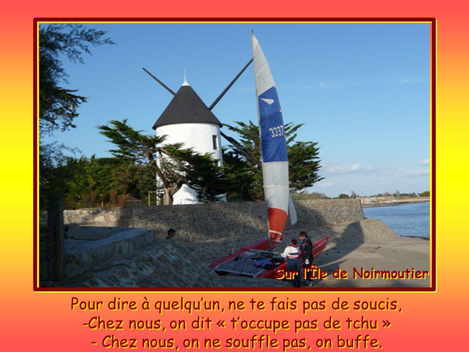 Ici en Vendée on dit « ils sont comme Tchu et chemise » Là, la gauloiserie vendéenne semble prendre beaucoup de plaisir.