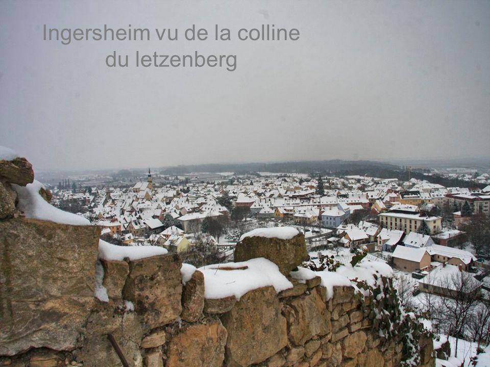 Ingersheim vu de la colline du letzenberg