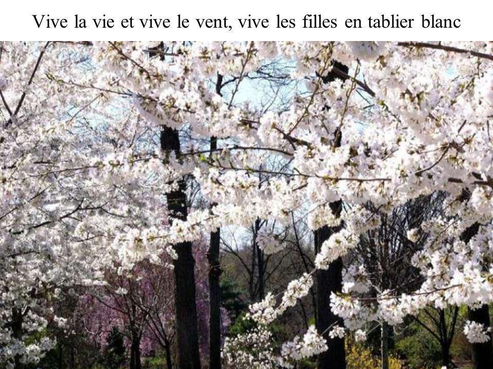 Ya le printemps qui te réveille, tas le bonjour du printemps.