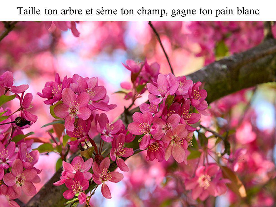 Ya le printemps qui te réveille, tas le bonjour du printemps