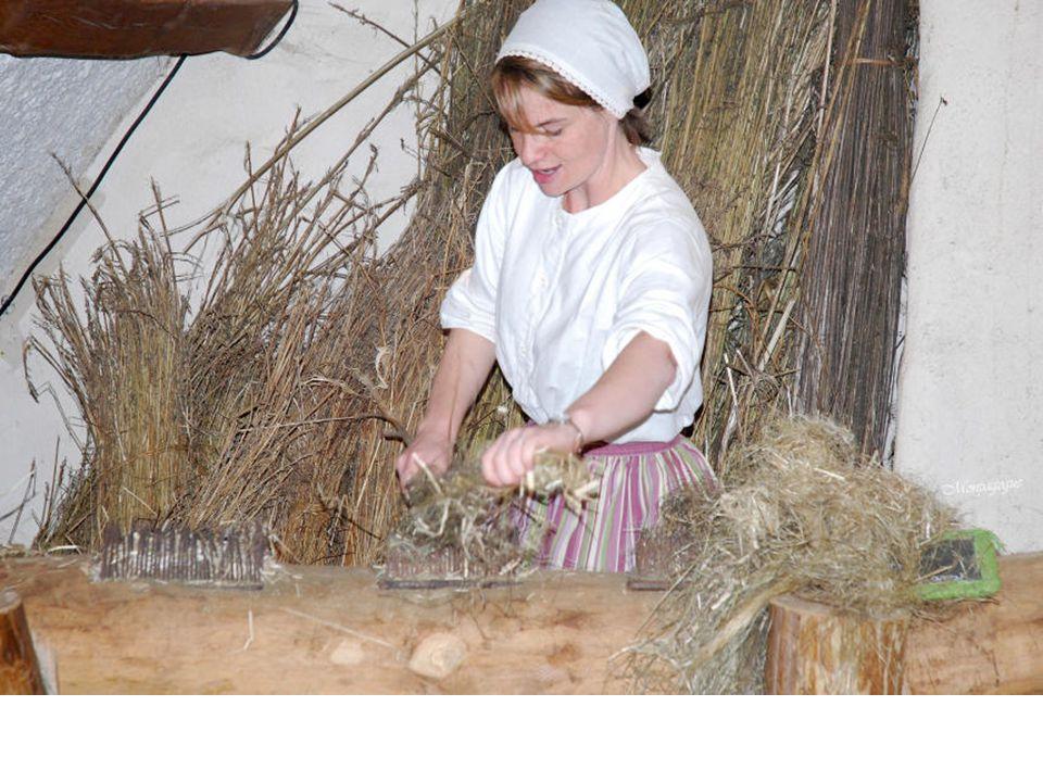 Le chanvre était un acteur incontournable du quotidien et de léconomie et il avait de nombreux usages, depuis les vêtements ou les draps, jusquaux cordages et aux voiles pour la marine.