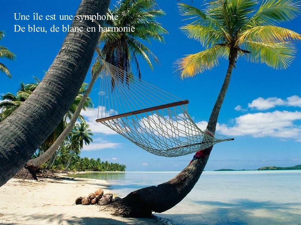 Une île est tout sauf une erreur C'est là qu'on trouve le bonheur