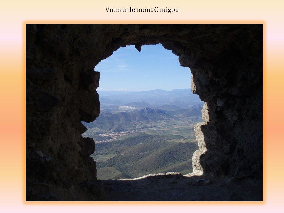 La voûte de la salle gothique du donjon Le donjon