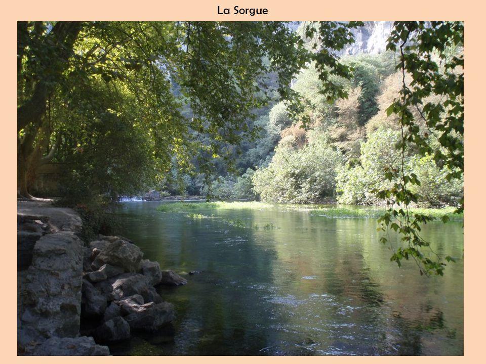 La Sorgue