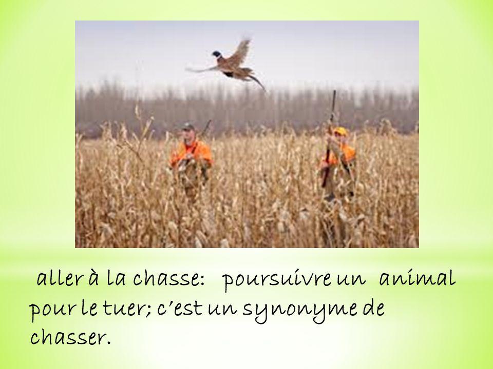 aller à la chasse: poursuivre un animal pour le tuer; cest un synonyme de chasser.
