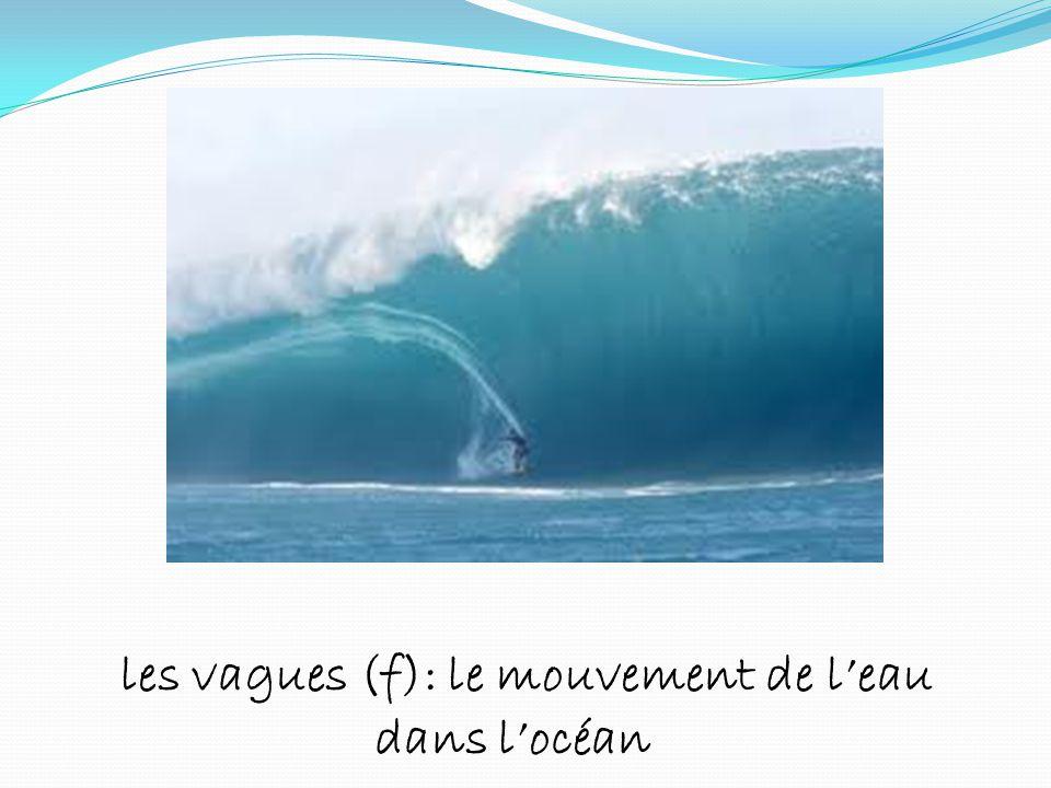 les vagues (f): le mouvement de leau dans locéan