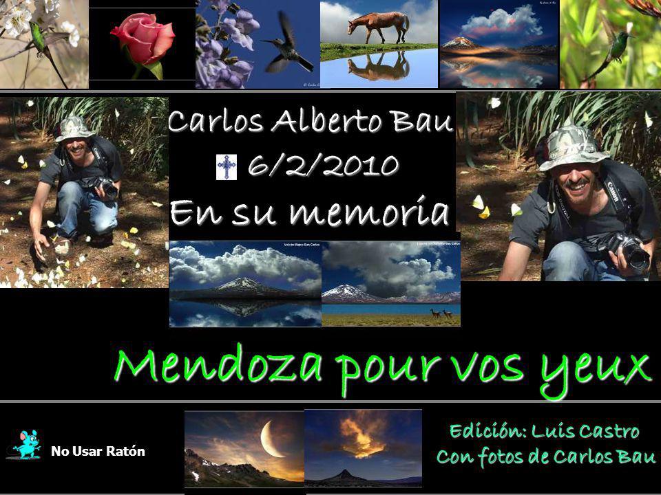 Carlos Alberto Bau 6/2/2010 6/2/2010 En su memoria No Usar Ratón Edición: Luis Castro Edición: Luis Castro Con fotos de Carlos Bau Mendoza pour vos yeux