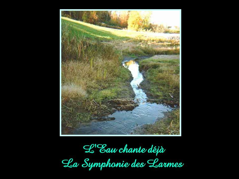 L Eau chante déjà La Symphonie des Larmes
