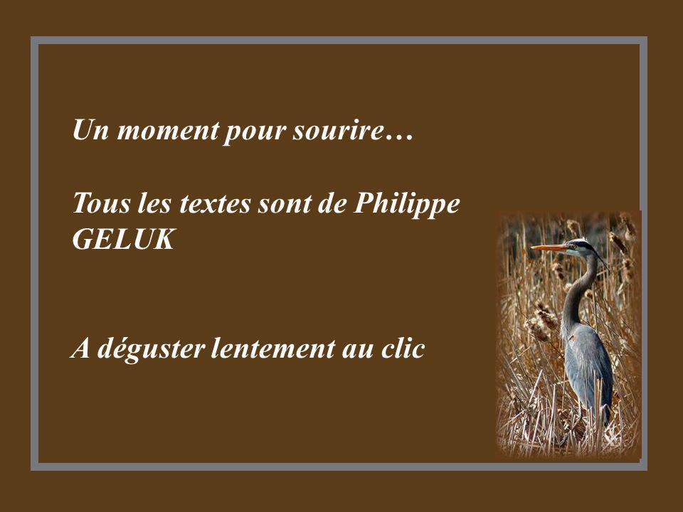 Un moment pour sourire… Tous les textes sont de Philippe GELUK A déguster lentement au clic