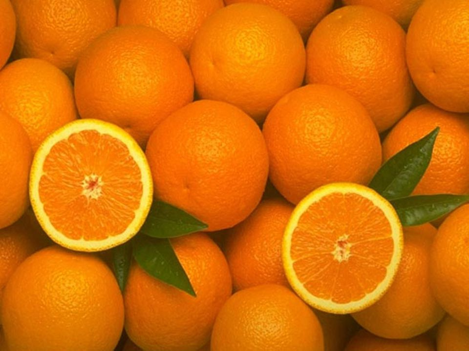 LORANGE LORANGE est la couleur du fruit riche, de belles fleurs, de la récolte de lautomne et des couchers de soleil flamboyants.