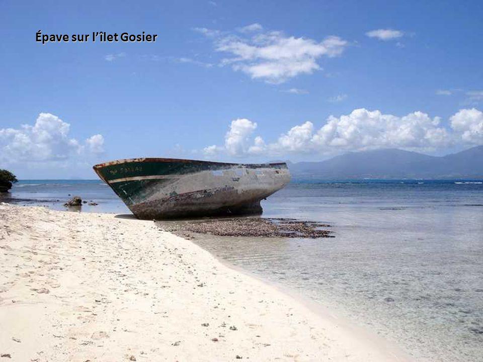 Catamaran vers Petite-Terre