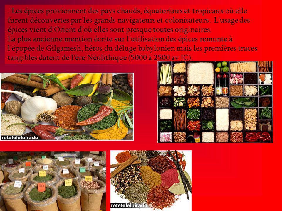 Les épices proviennent des pays chauds, équatoriaux et tropicaux où elle furent découvertes par les grands navigateurs et colonisateurs.